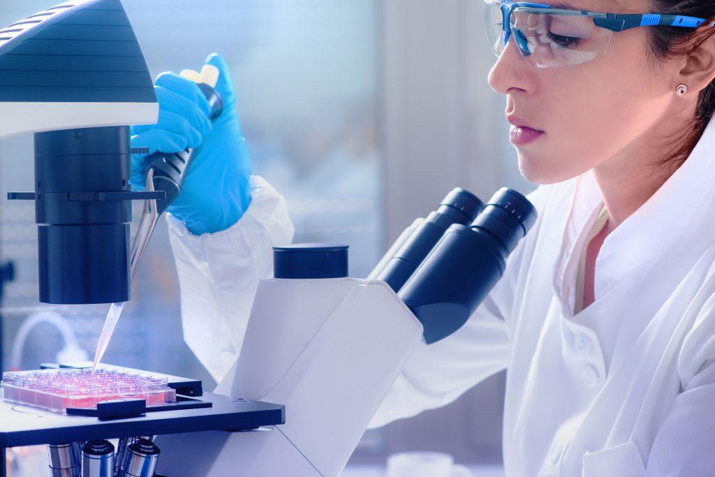 Malaria culture in vitro testing